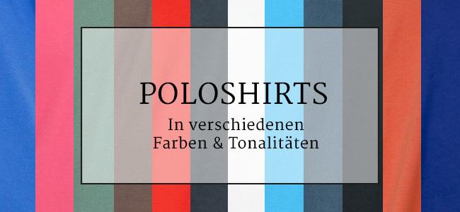 Vorlage_klein_farbe_POLO